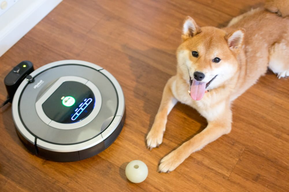 LISTEN: Why pet owners should NOT own a roomba