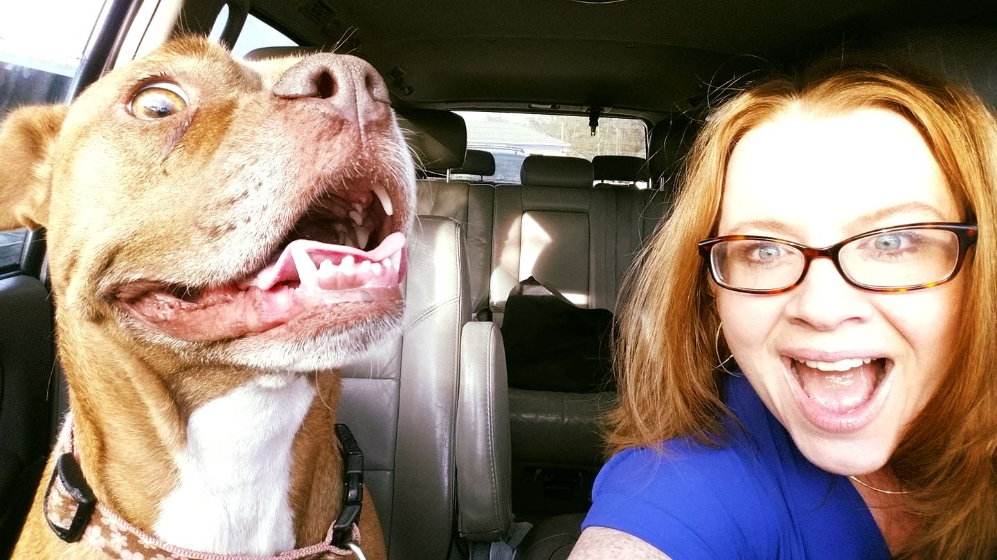 Jodi's Blog: WHY and HOW I Foster Dogs